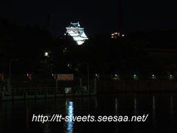 Osakajo01.jpg